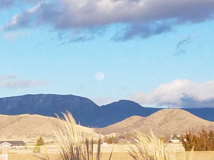 Mingus Moon. © 2018 Sheila Delgado.